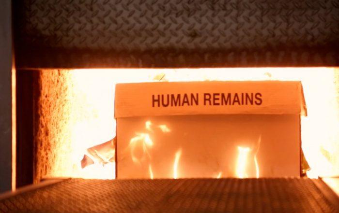 cremation information